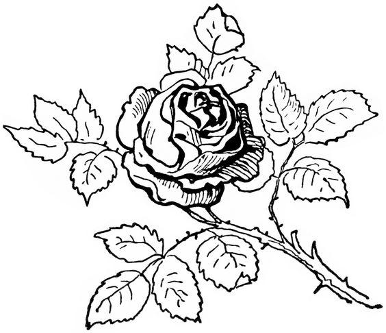 White clipart roseblack White art and black on