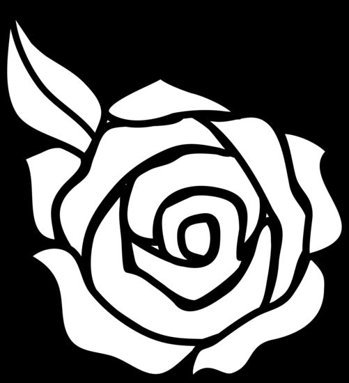 White Rose clipart rose outline #11