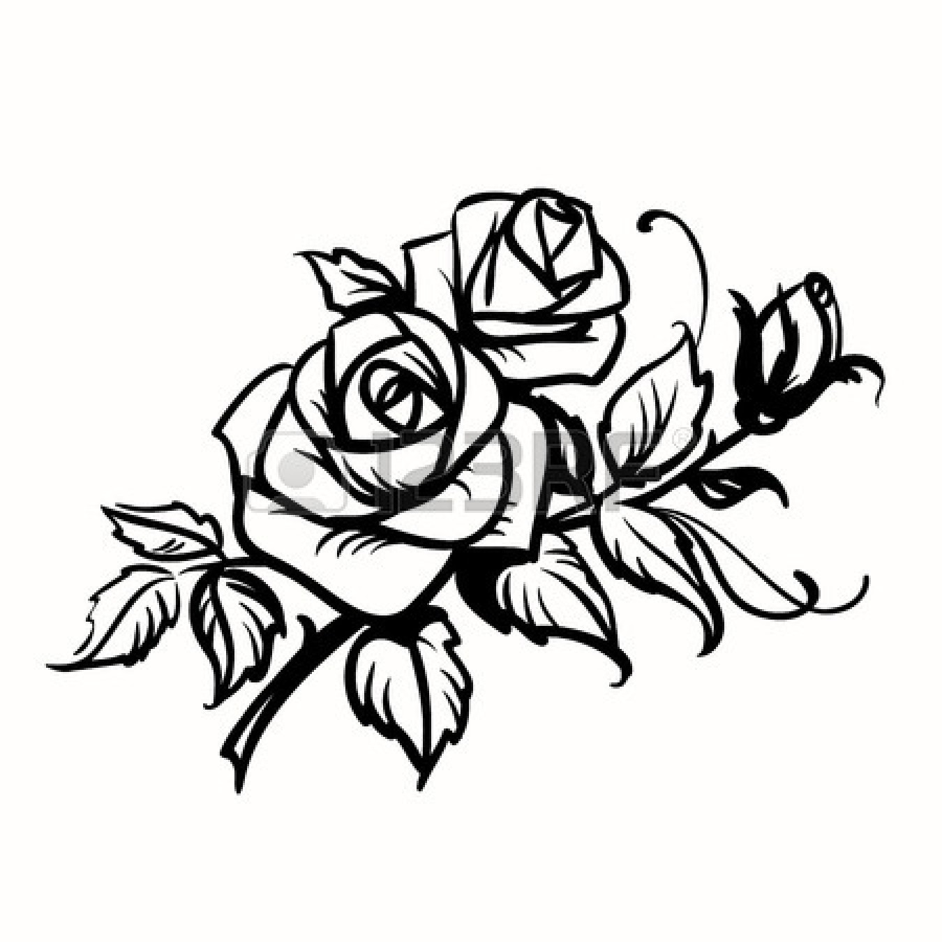 Drawn rose stem outline Rose Clip Images knumathise: Art