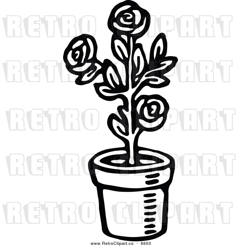 Rose clipart different kind plant #5