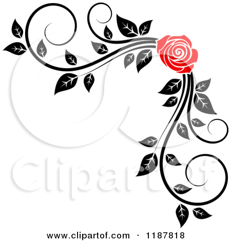 White Rose clipart rose vine #8