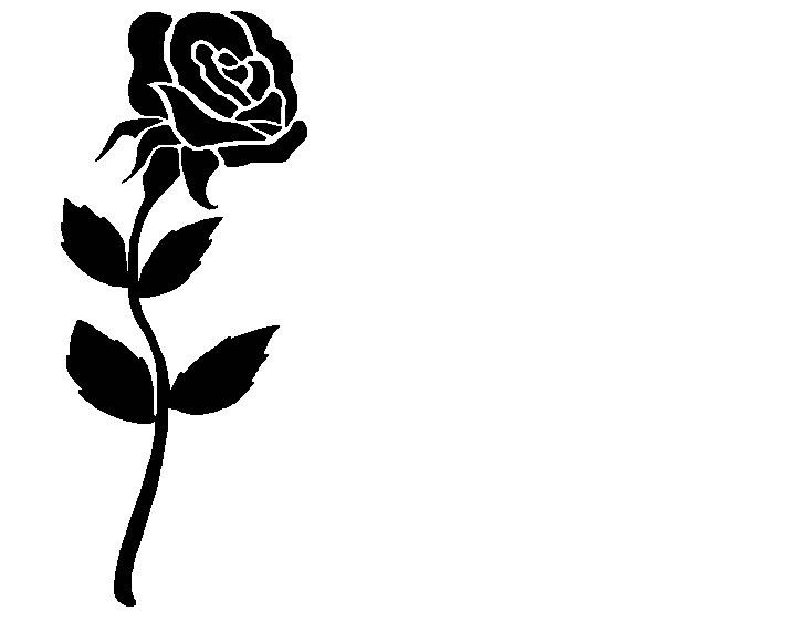 Rose Co  Clipart Vector
