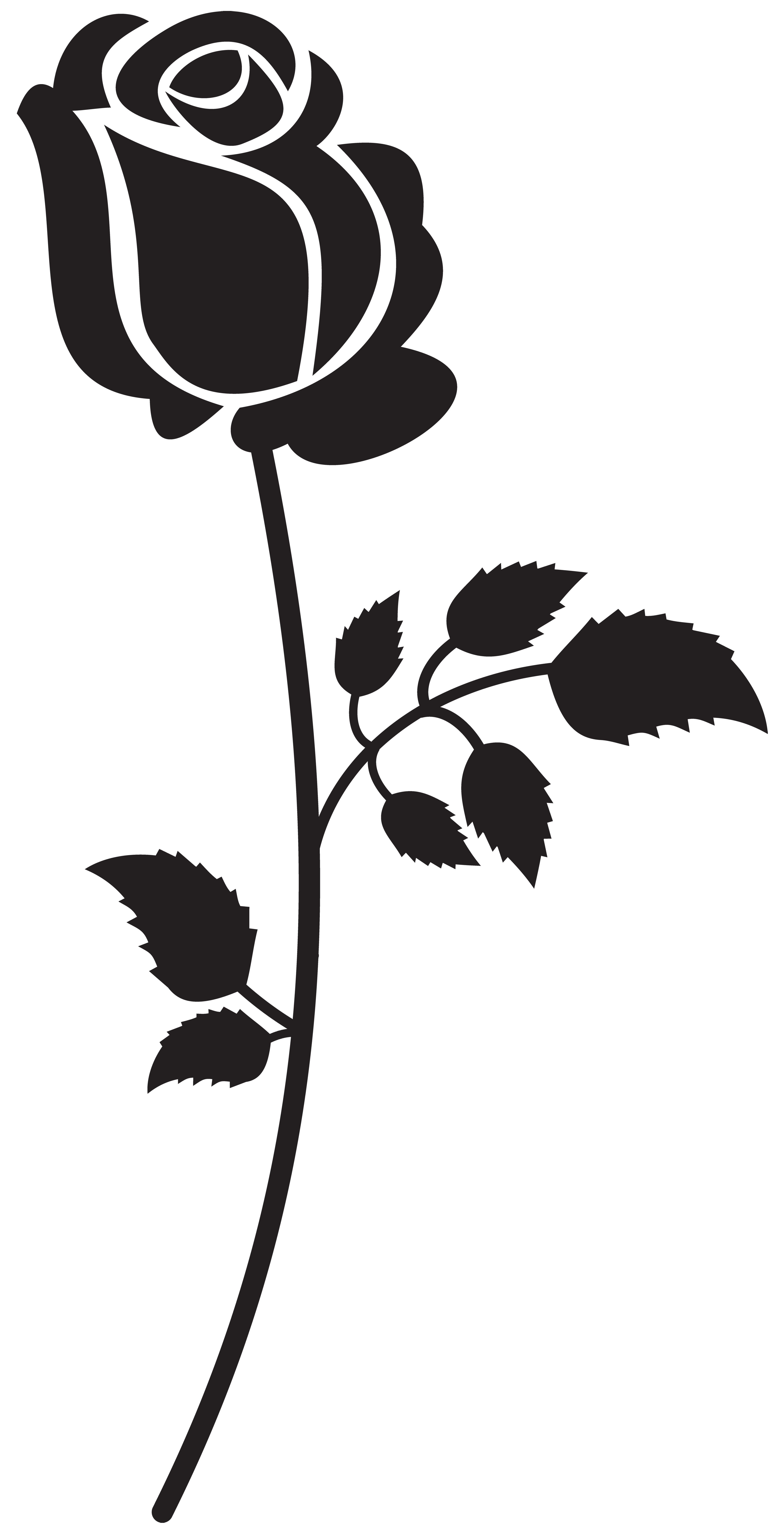White Rose clipart silhouette Image High Yopriceville  size