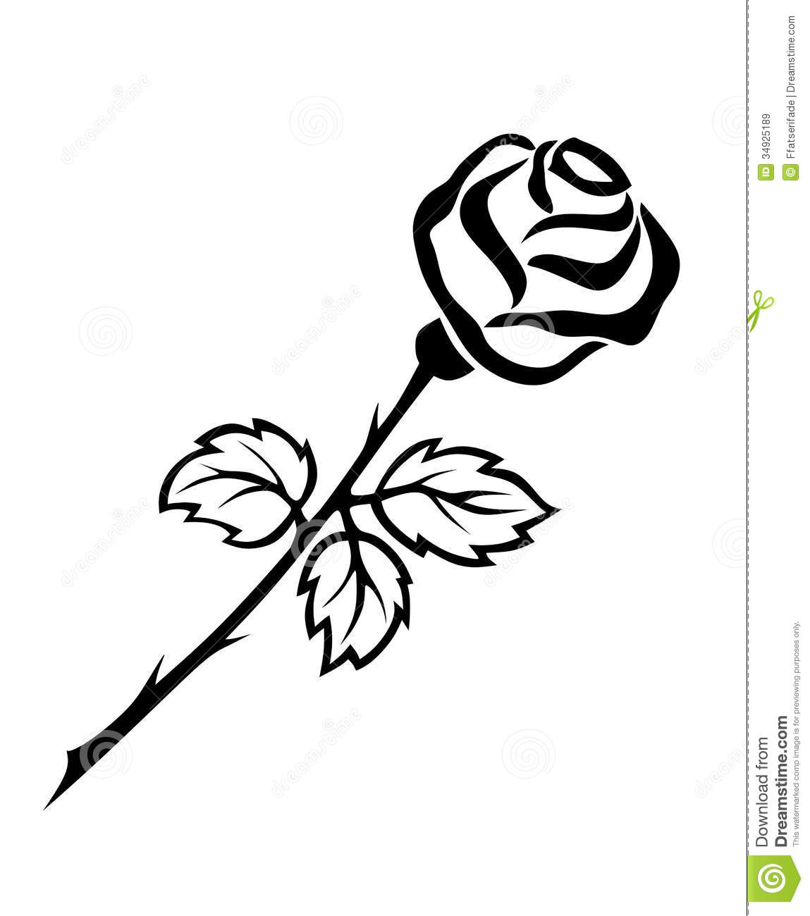 White Rose clipart simple #10