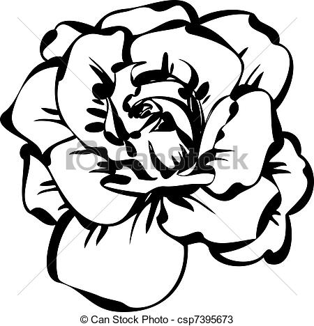 White Rose clipart sketch #14