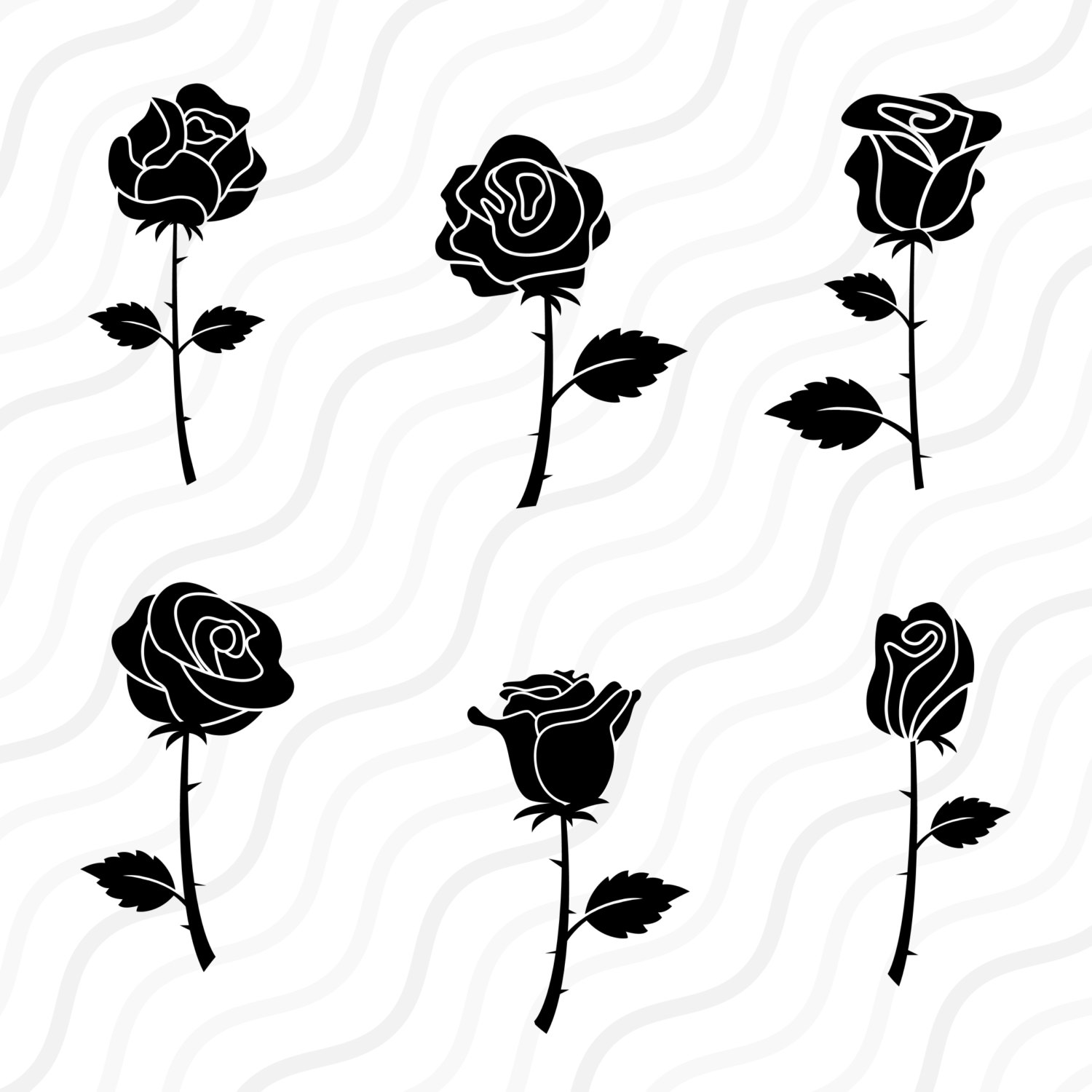 White Rose clipart svg Is Blossom Clipart Rose Rose