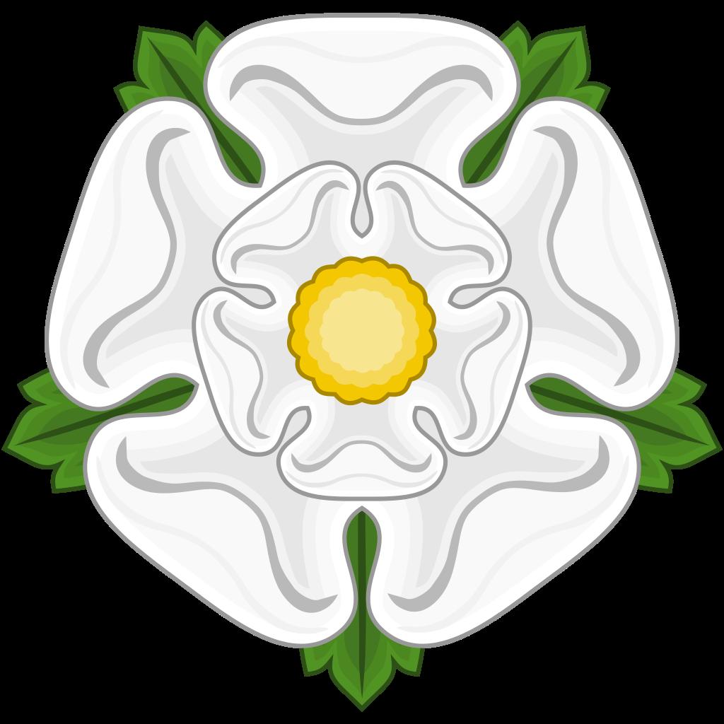 White Rose clipart svg #5