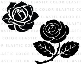 White Rose clipart svg Rose Rose White svg White