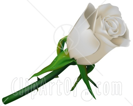 White Rose clipart thorn clipart #4