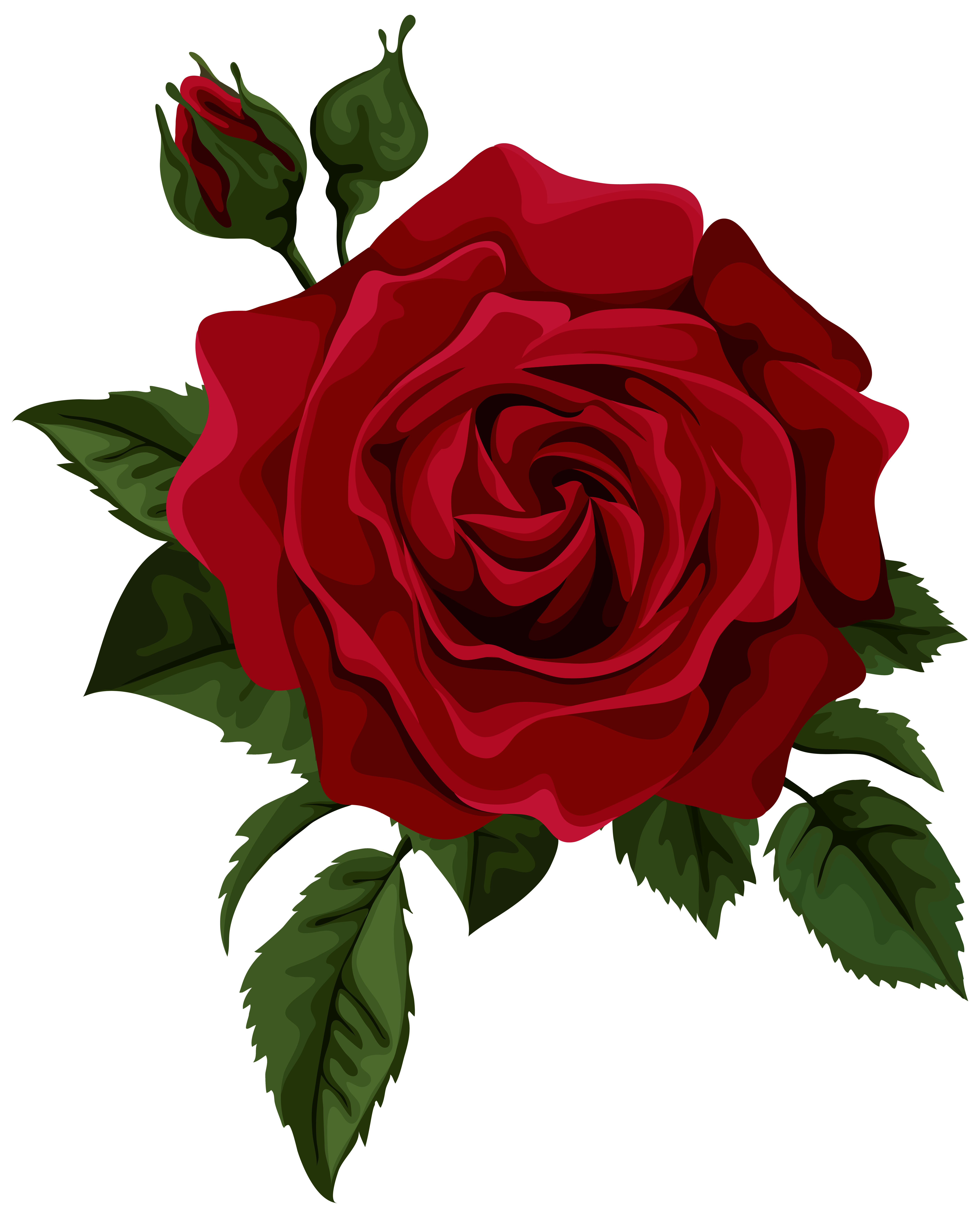 Drawn red rose thorn clipart Gallery Clip PNG Red size