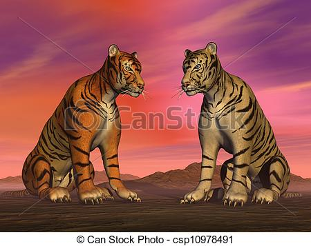 White Tiger clipart two Of Stock and colorful tigers