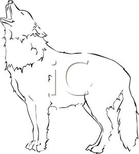 White Wolf clipart Picture Wolf Free  White