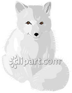 White Wolf clipart arctic fox Cute Royalty Free Arctic Royalty
