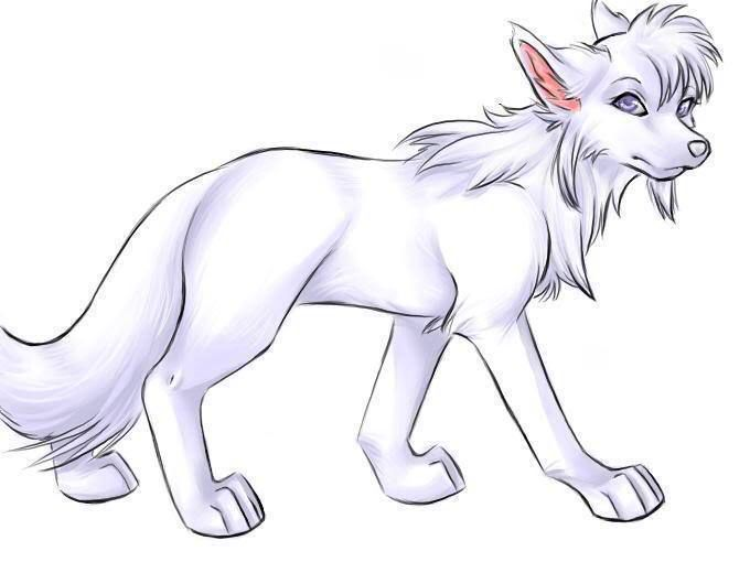 Arctic Wolf clipart simple On drawings wolf of images