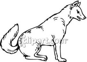 White Wolf clipart black and white And Black Wolf collection White