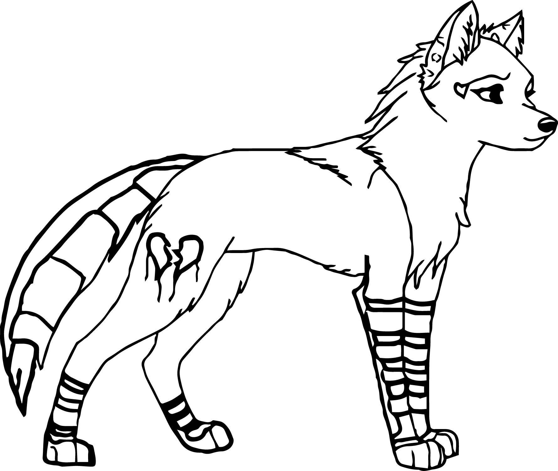 White Wolf clipart carnivore Coloring Wolf White drawings coloring