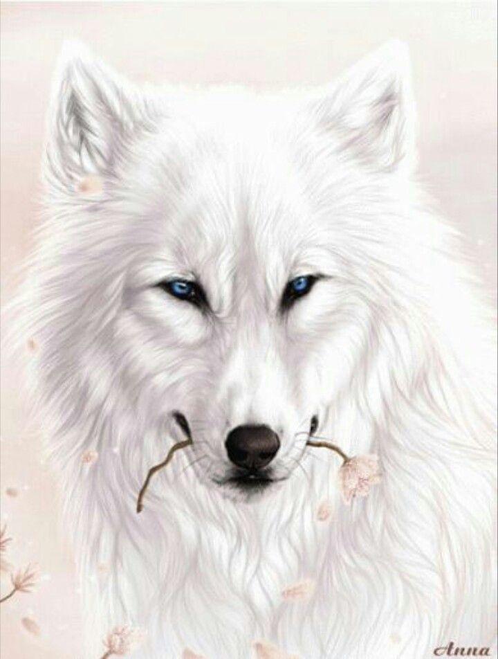 White Wolf clipart monochromatic Best 301 Wolf more Art