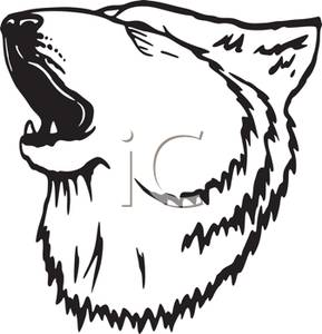 White Wolf clipart wolf head Wolf and A Wolf White
