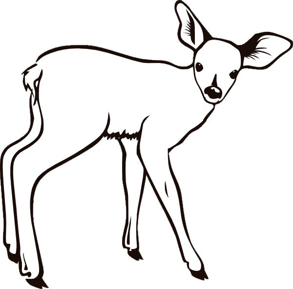 Buck clipart coloring page Page deer sheets coloring pages