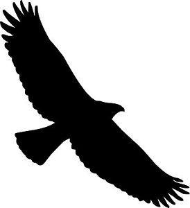 Bird Of Prey clipart soaring eagle On Best Van Vinyl ClipArt