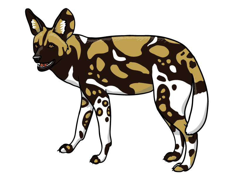 Wild Dog clipart Hyena Clipart Silvercrossfox silvercrossfox Dog Wild on