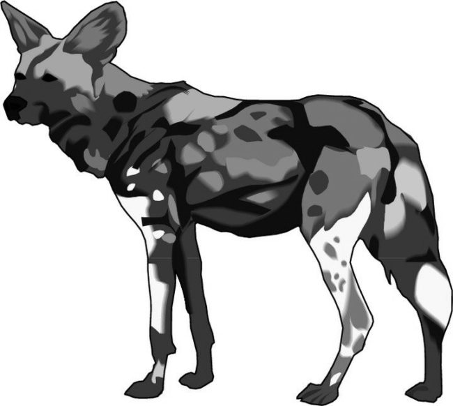 Wild Dog clipart Hyena Clipart Dog for Coloring Dog Kids