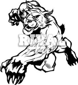 Wildcat clipart Wildcat Images Wildcat Free Clip