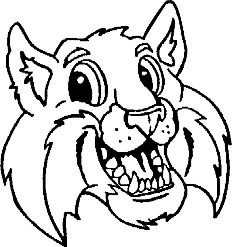 Wildcat clipart Wildcat Images Wildcat Free Clipart