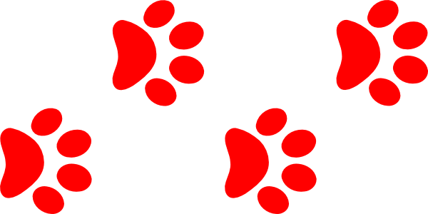 Wildcat clipart bearcats Clip Teddy clipart paw collection