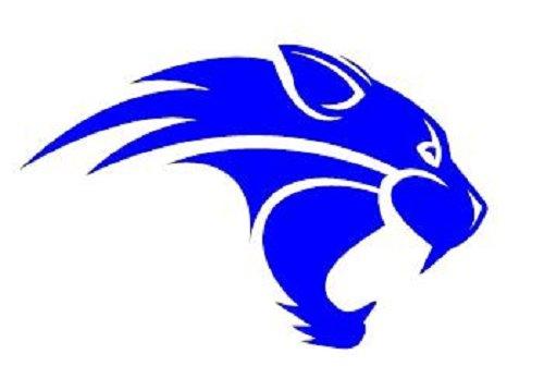 Wildcat clipart blue Wildcat Hamilton Jamboree Elementary