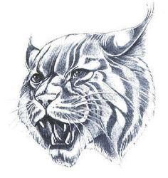 Wildcat clipart body Head Graphic Pinterest Pin totem