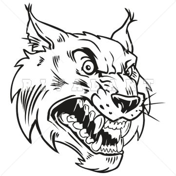 Wildcat clipart body Diagram Wiring Ideas About Image