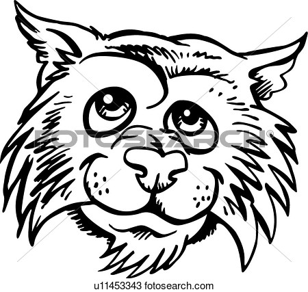 Wildcat clipart cartoon Drawings Wildcat clipart Wildcat clipart