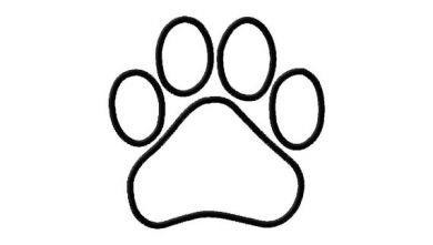 Paw clipart outline Outline  Print Paw Wildcat