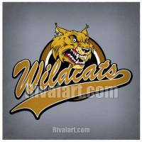 Wildcat clipart hawk Clipart Wildcat Clipart com 03