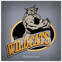 Wildcat clipart hawk Clipart Wildcat Clipart com 01