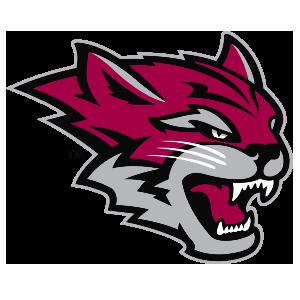Wildcat clipart jersey Store California University Logo Chico