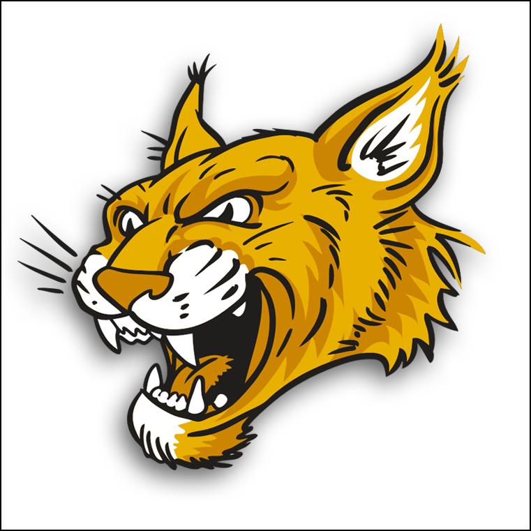 Wildcat clipart jersey  Clip Wildcat Art Wildcat
