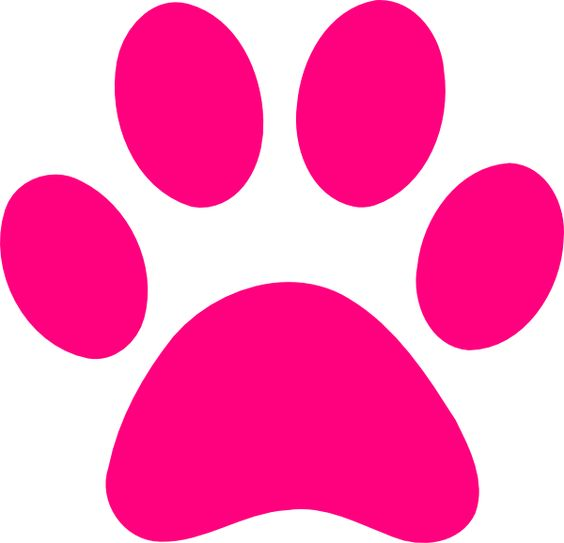 Wildcat clipart paw print Transparent paw Pink print background
