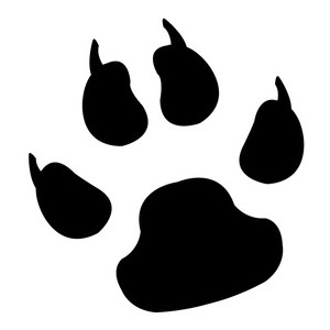 Wildcat clipart paw print Clipart Paw clipart Wildcat print