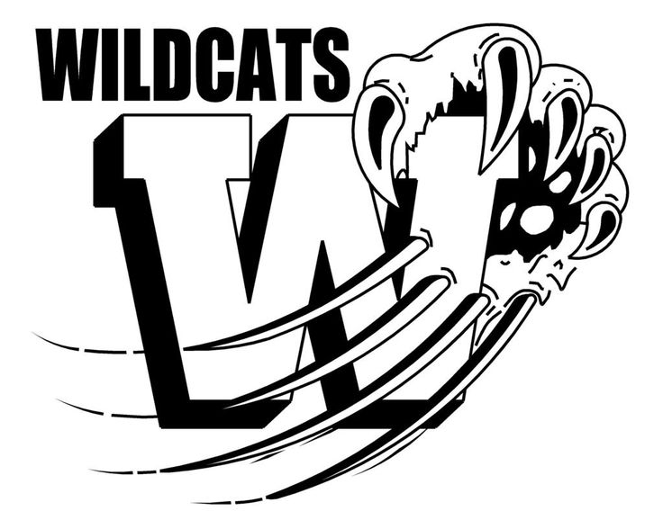 Wildcat clipart sport On Find about best Pin