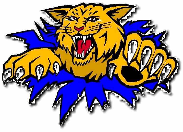 Wildcat clipart sport On  CC Wildcat Logo