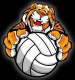 Soccer clipart tiger Cute Art Art Mascot Ball