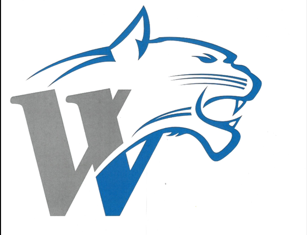 Wildcat clipart whitney Home