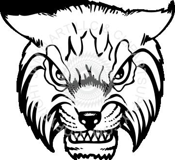 Wildcat clipart wildcat head Head wildcat wildcat Mean head