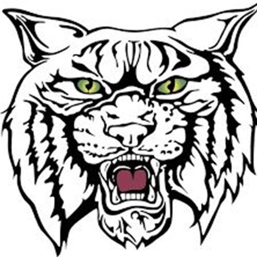 Wildcat clipart wildcat head School High Football Wildcat Wildcat