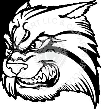 Wildcat clipart wildcat head Wildcat white left facing wildcat