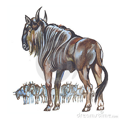 Wildebeest clipart Clipart Wildebeest wildebeest #12
