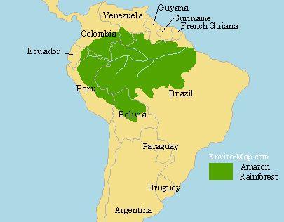 Wilderness clipart amazon rainforest On Pinterest Rainforest map Rainforest