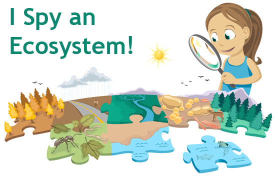 Wilderness clipart ecosystem Barriers are Nature diagrams the